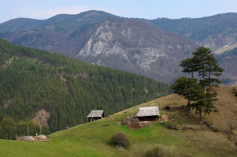 златибор сербия фото англоязычный